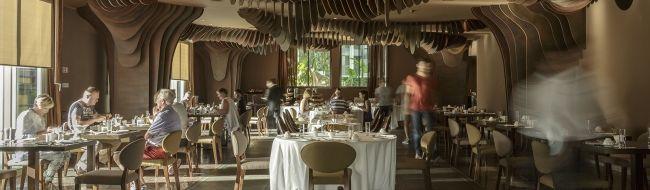 The Vine Hotel – Detalhes